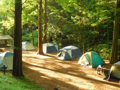 林間や修学旅行合宿などのお泊りに