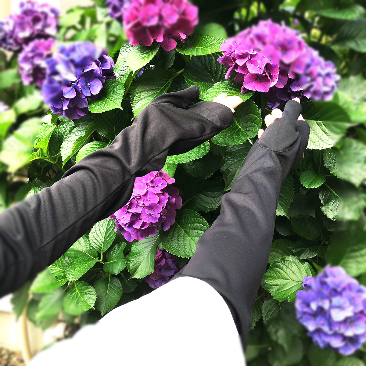 UV手袋 ロング